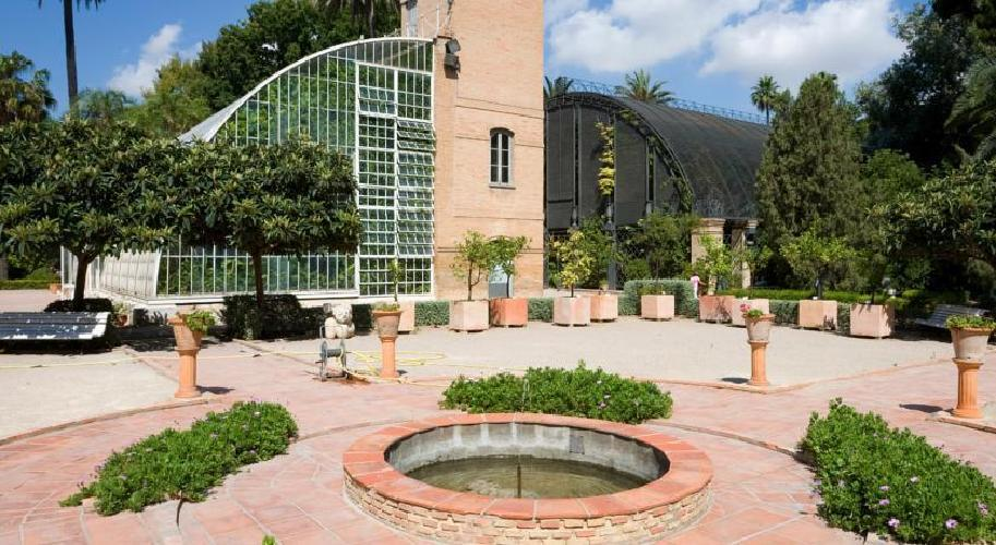 Jardin botanico hotel boutique valencia for Hotel jardin botanico